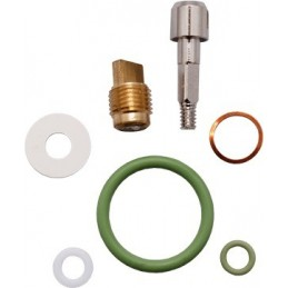 Valve Spare Part Kit for DZ Mono Valves O2 clean