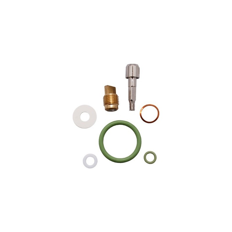 Valve Spare Part Kit for DZ Mono Valves O2 clean