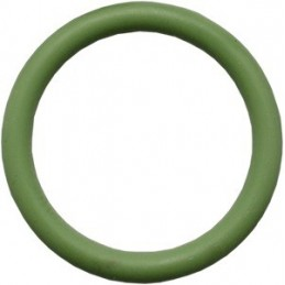 O-Ring Viton for Valve M25x2