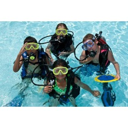 PADI COURSE SEAL TEAM
