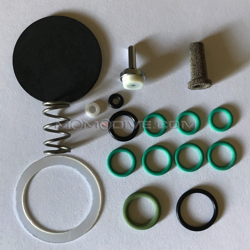 ANNUAL SERVICE KIT F40 VITON
