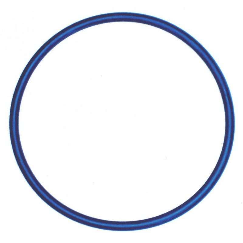 O-RING BLU HALCYON RICAMBIO PER CANISTER TORCIA EXPLORER 9 AH